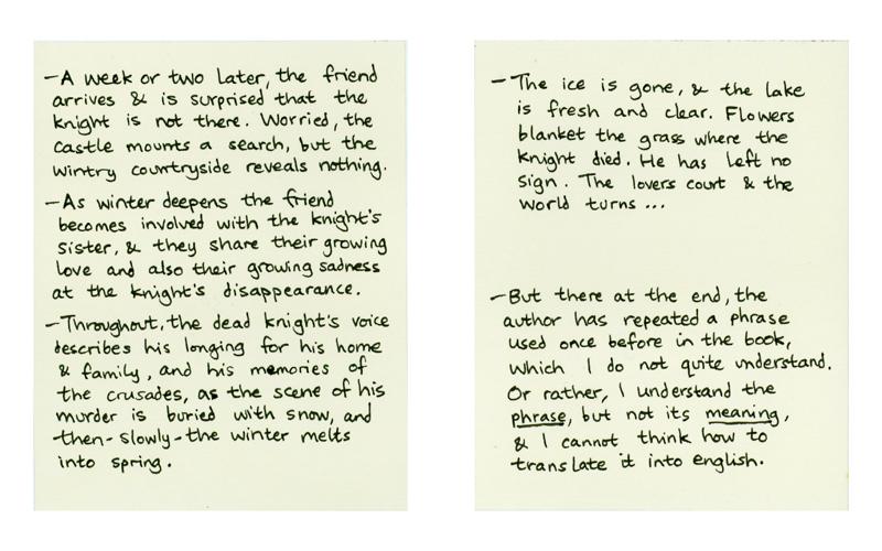 The Last Fox Story – 16